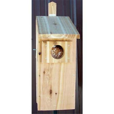 Stovall SP6H Wood Screech Owl Box